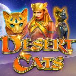 Desert Cats New Exciting Release